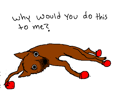 Allie Brosh Dog Eats Bees