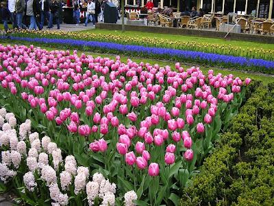Parc floral Olanda