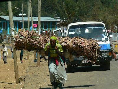 Imagini Etiopia: caratoare lemne Entoto - Addis Ababa