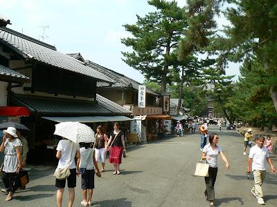 Imagini Japonia: Nara