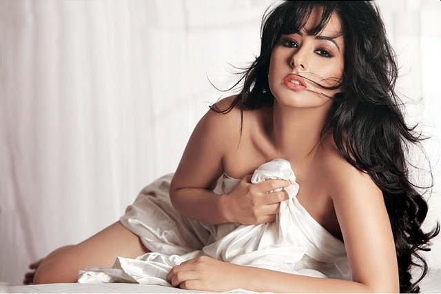 CELEBRITY PICTURES   YUT'S BLOG: New Hot Sakshi Telugu Calendar 2011 Download Navel Queens