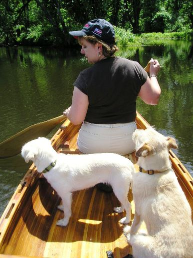 our dogs love to canoe!