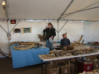 Arizona Geology: Mammoths from Russian museum on sale
