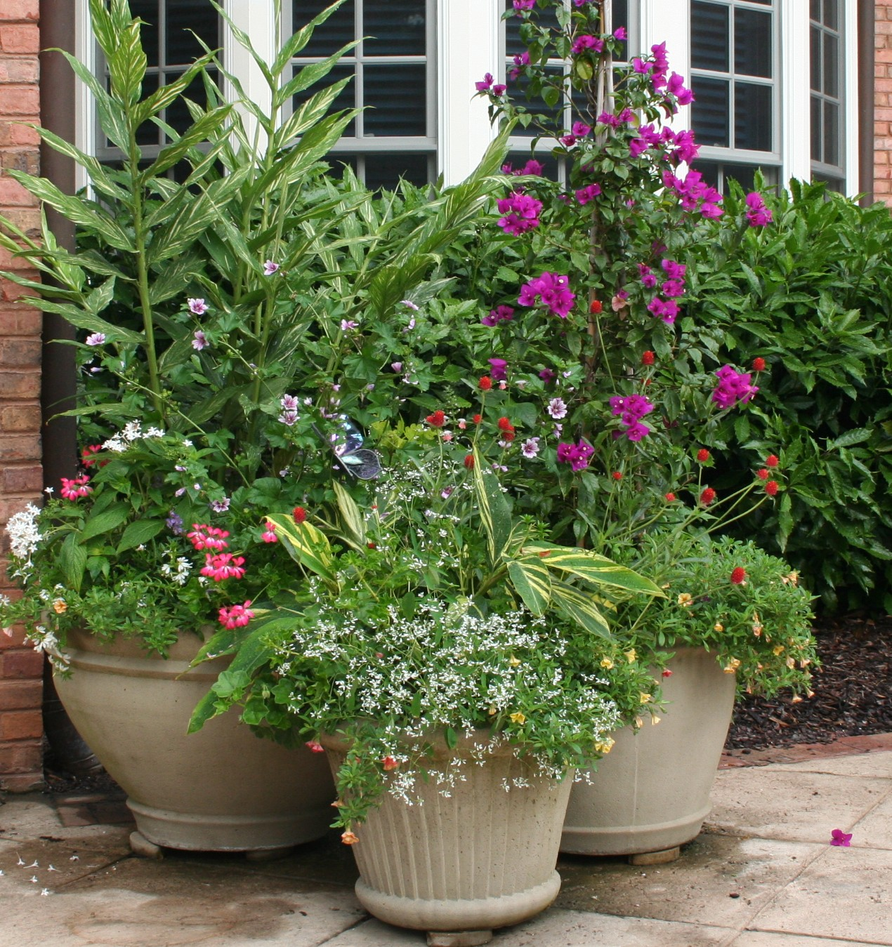 Container Gardening Ideas For Summer: A Chef In The Garden: Containers At The Big House