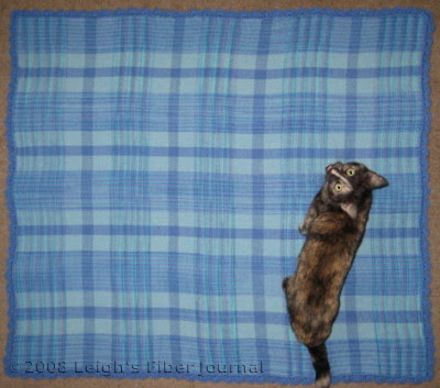 Catzee helps me photograph the new afghan.
