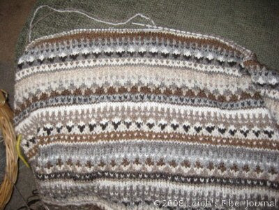 Body of Leigh's Shetland Sampler Cardi
