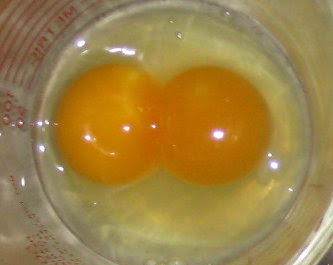 Our 1st double yolked egg