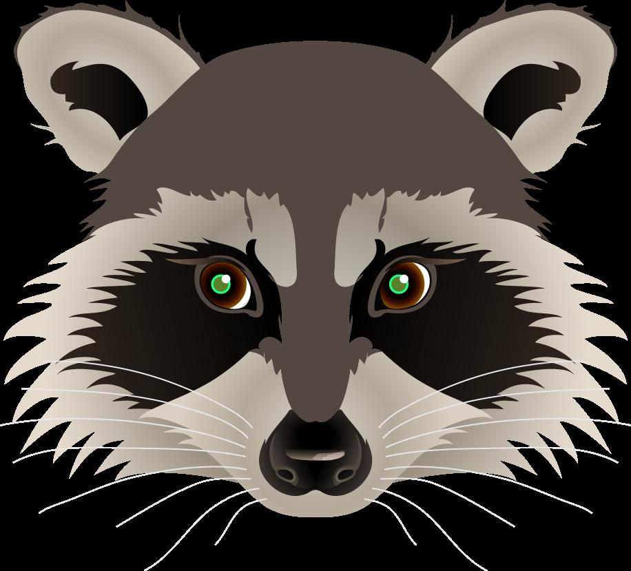 Ravel's Animation Web Log Raccoon Face Clip Art