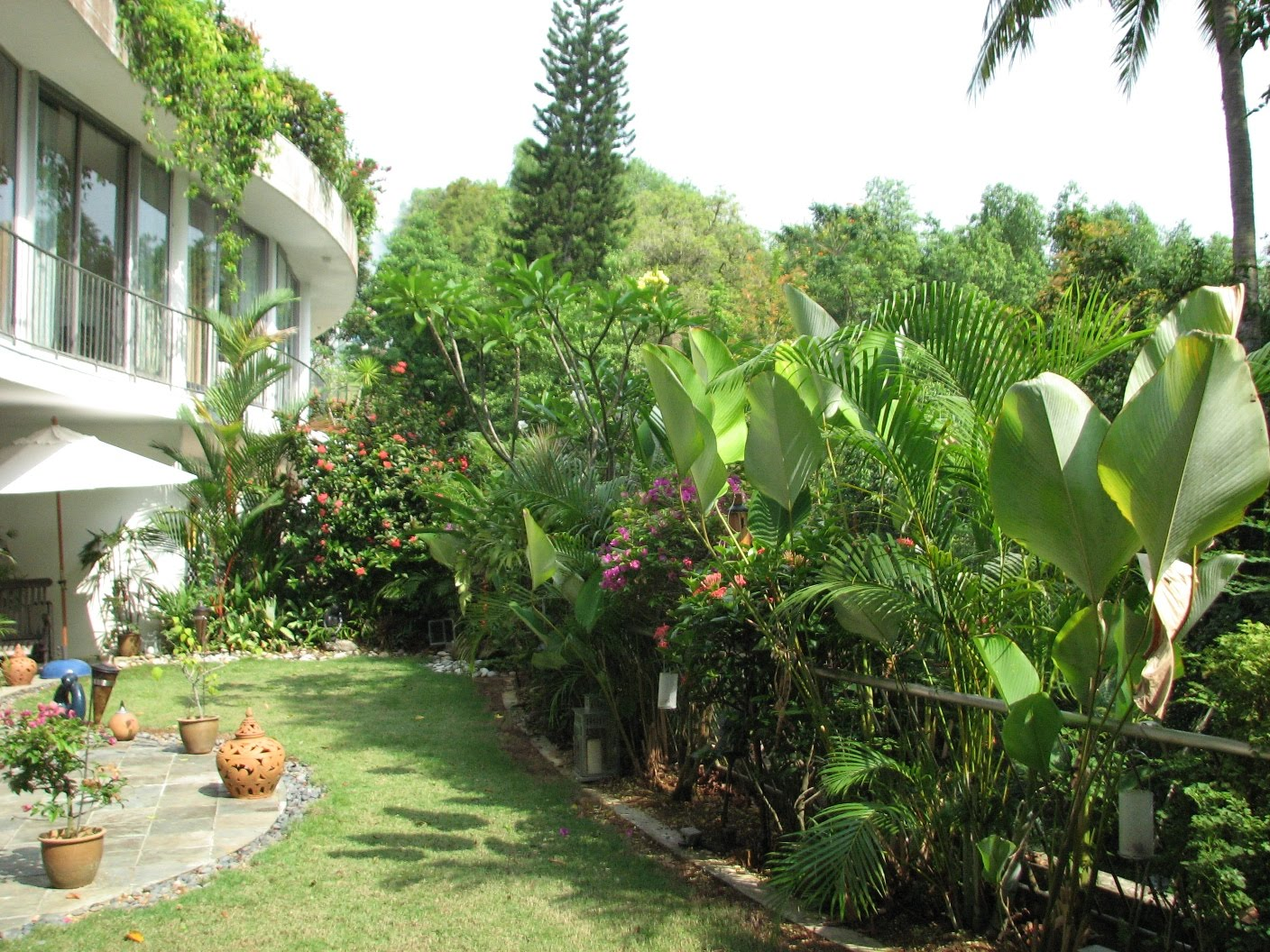 Take Home Gardener on Tropical Backyard Landscaping  id=37384