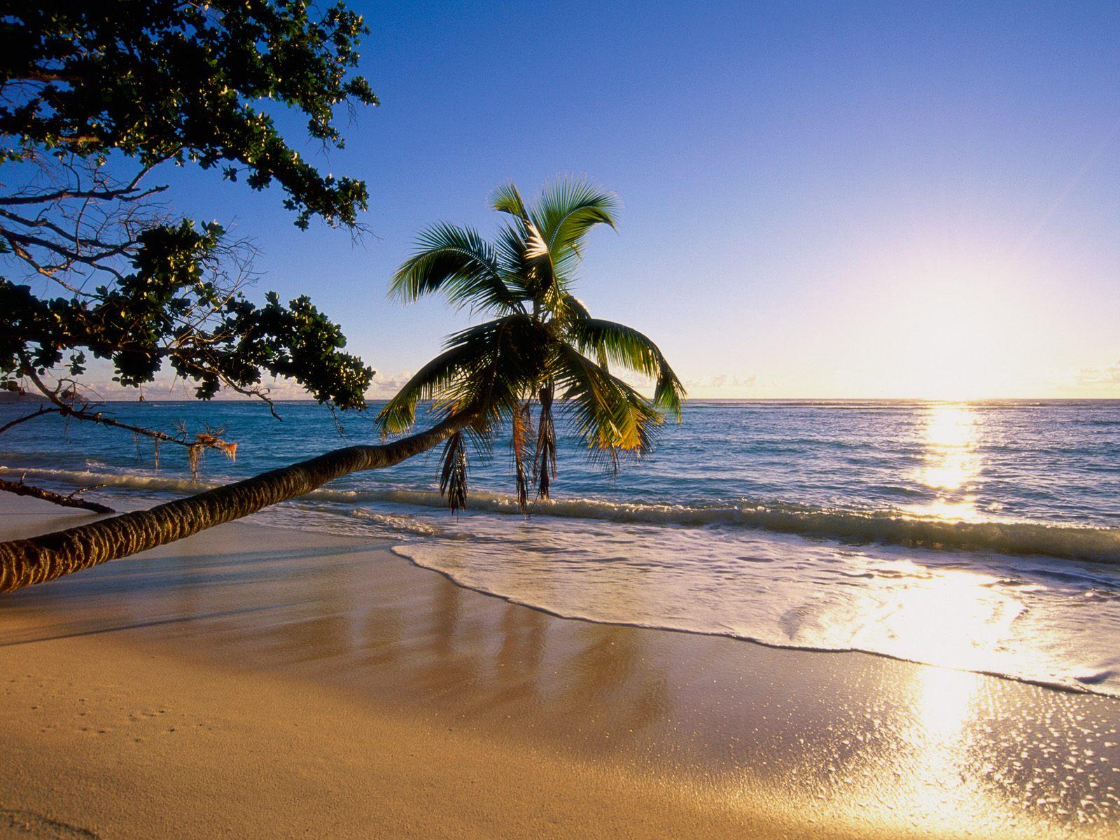 BANCO DE IMÁGENES GRATIS: Playas paradisiacas parte XI (9 postales del mar)