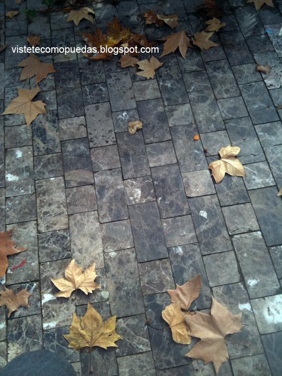 Y paró de llover   Vístete como puedas Blog diariosur.es
