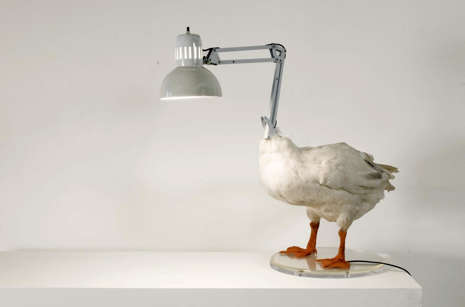 Weird Shaped Chairs Swivel Round Chair My Art Glass World Looks Like Animals Unusual Animal