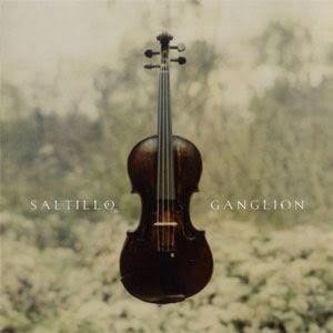 Saltillo---Ganglion.jpg