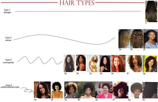 Hair Typing…Helping or HURTING the Natural Hair Community?