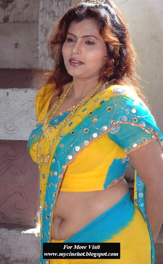 Deis Aunty Navel Show In Low Hip Saree Hot Photos Of Navel -5362