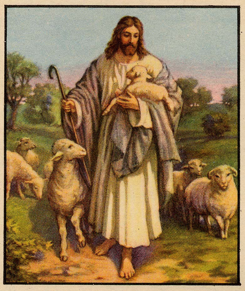 The Good Shepherd Father S Letter