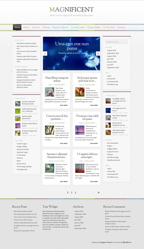 Magnificent Wordpress Theme Free Download by ElegantThemes.