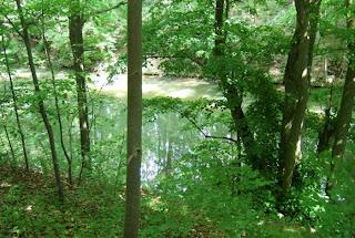 Karlsgraben (Fossa Carolina)