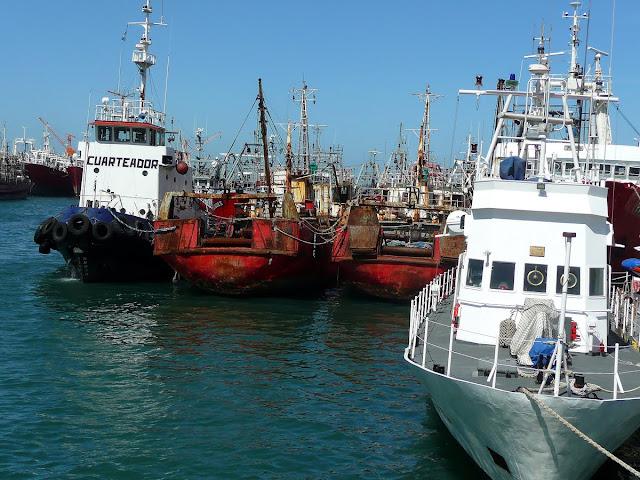 Barcos anclados en puerto de Mar del Plata