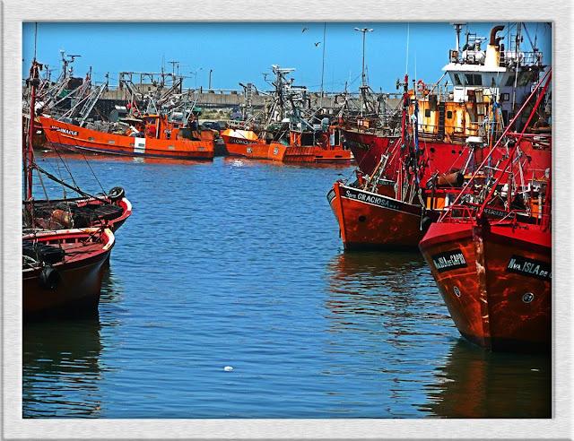 Lanchas pesqueras en Pto de Mar del Plata