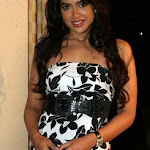 Sammeera Reddy At Premiere Of 123