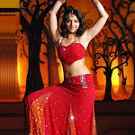 Anushka Sheety Photos
