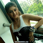 Hansika Motwani Look Like Bhumika Chawala Check It Out