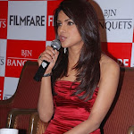 Priyanka Chopra Unwrapped Her Swim Suit