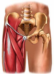 dolor en la ingle y la pierna de la mujer