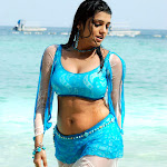 Hot And Sexy Babe Tashu Kaushik Wet On Beach In Blue 2 Piece Spicy Dress Hq Pics Collection...