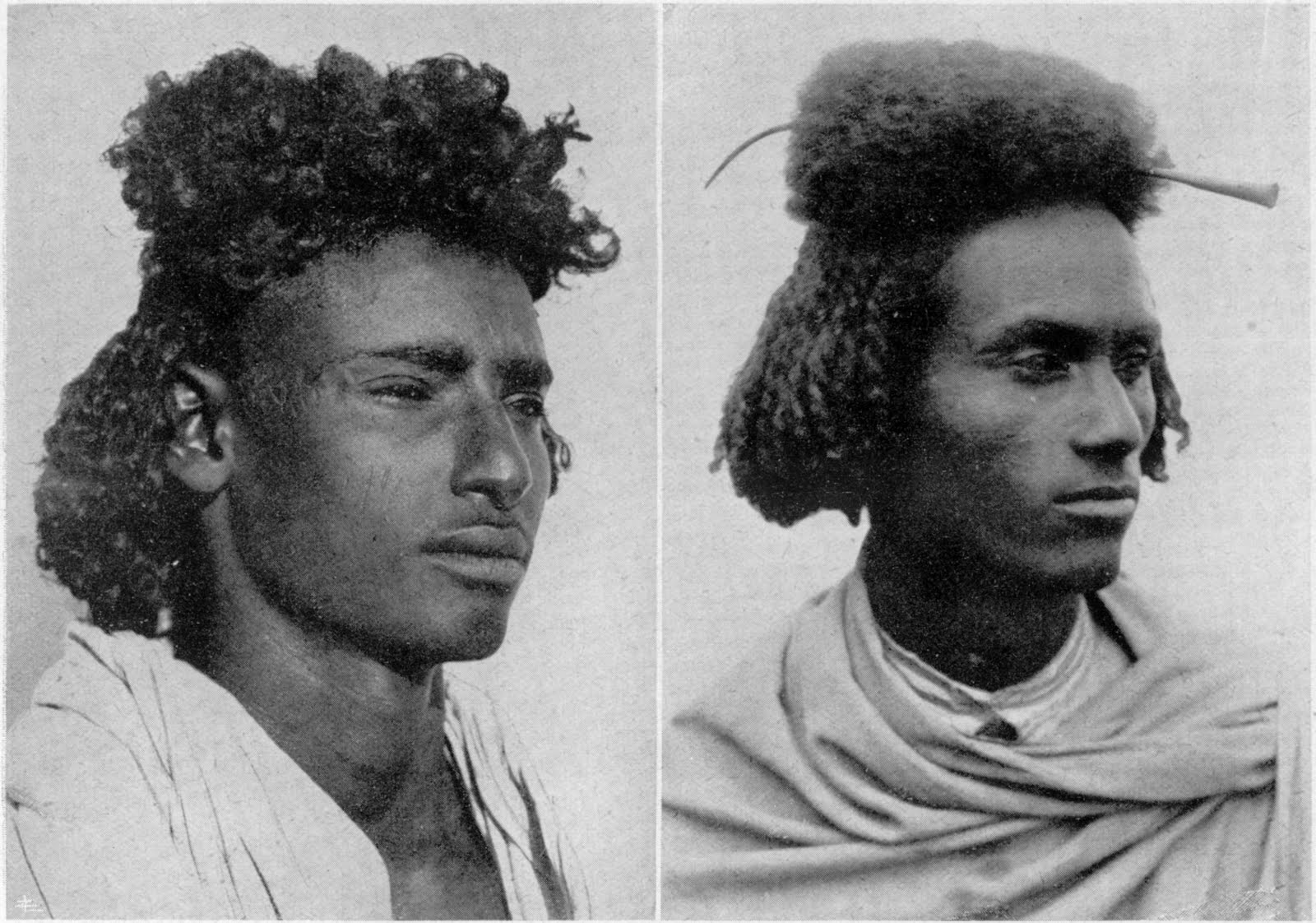 CHAUDRON: The Habab People from the lowlands of Eritrea. 1936.