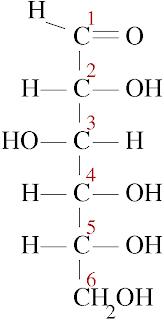 javier: Estructura Química de los Carbohidratos