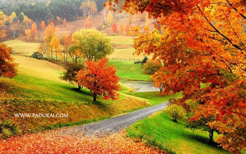 Win min desktop wallpaper free download nature scenery - Colorful nature pics ...