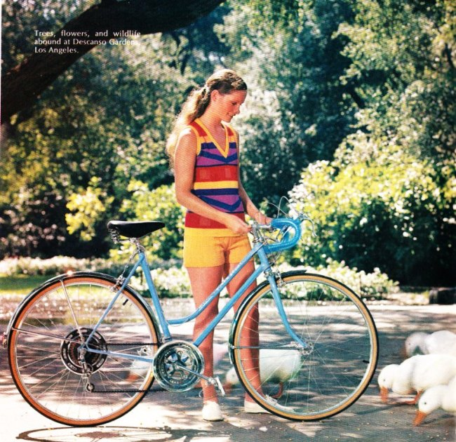 Brown Eyes Modern Icons Chapter 2 Schwinn Bicycle