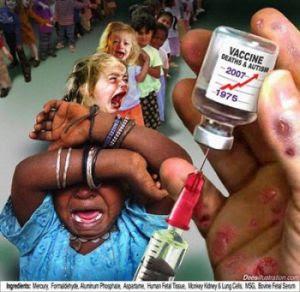 h1n1 vacinaçao em massa baxter teresa forcades