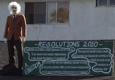 Albert Einstein's 2010 New Year resolutions