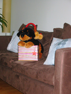 Christmas 2004 before Cooper - Spike