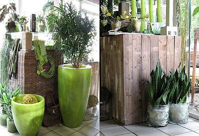 Decoration in Flower Shop Frauke Esser