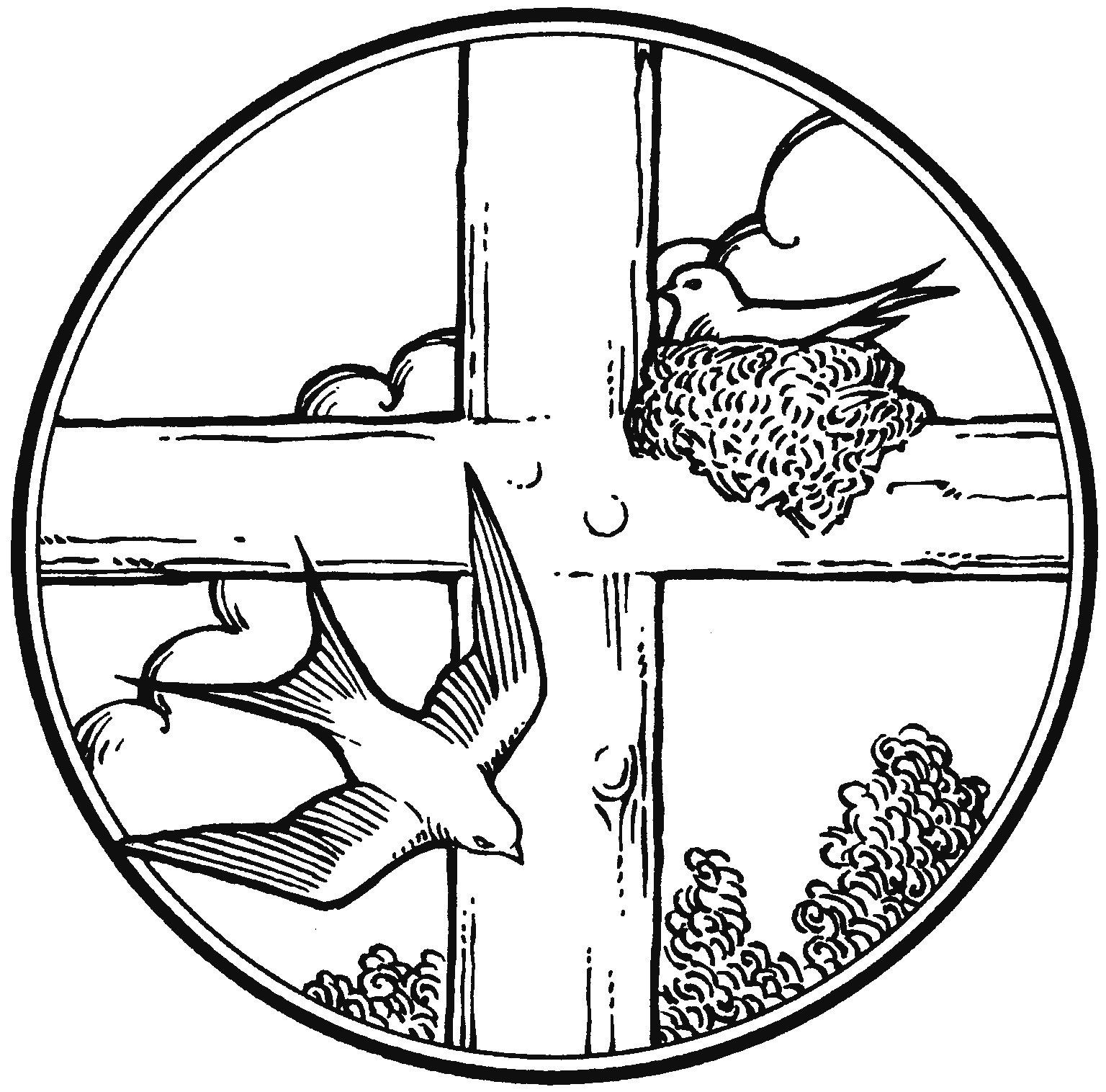Sermons Of Rev John Drosendahl I Kings 17 8 16 15th