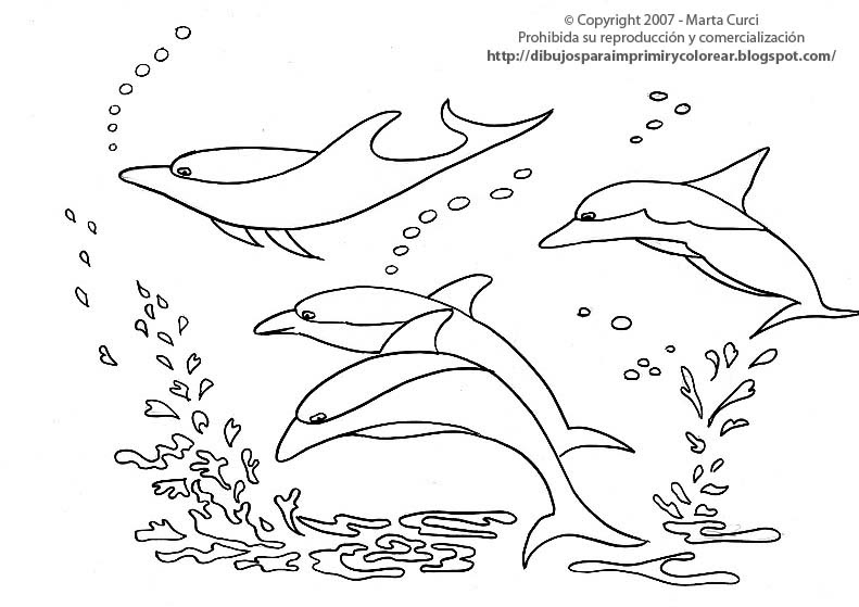 Dibujo Delfin Para Colorear E Imprimir: Dibujos Para Colorear Animales Marinos: Dibujor Para