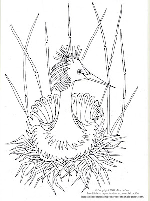 EXOTIC ANIMAL COLORING PICTURES « Free Coloring Pages