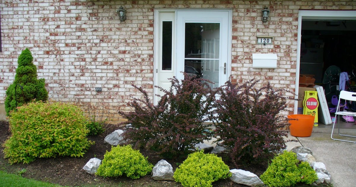 Landscape ideal small yard landscaping ideas zone 9 - Small backyard landscaping ideas ...