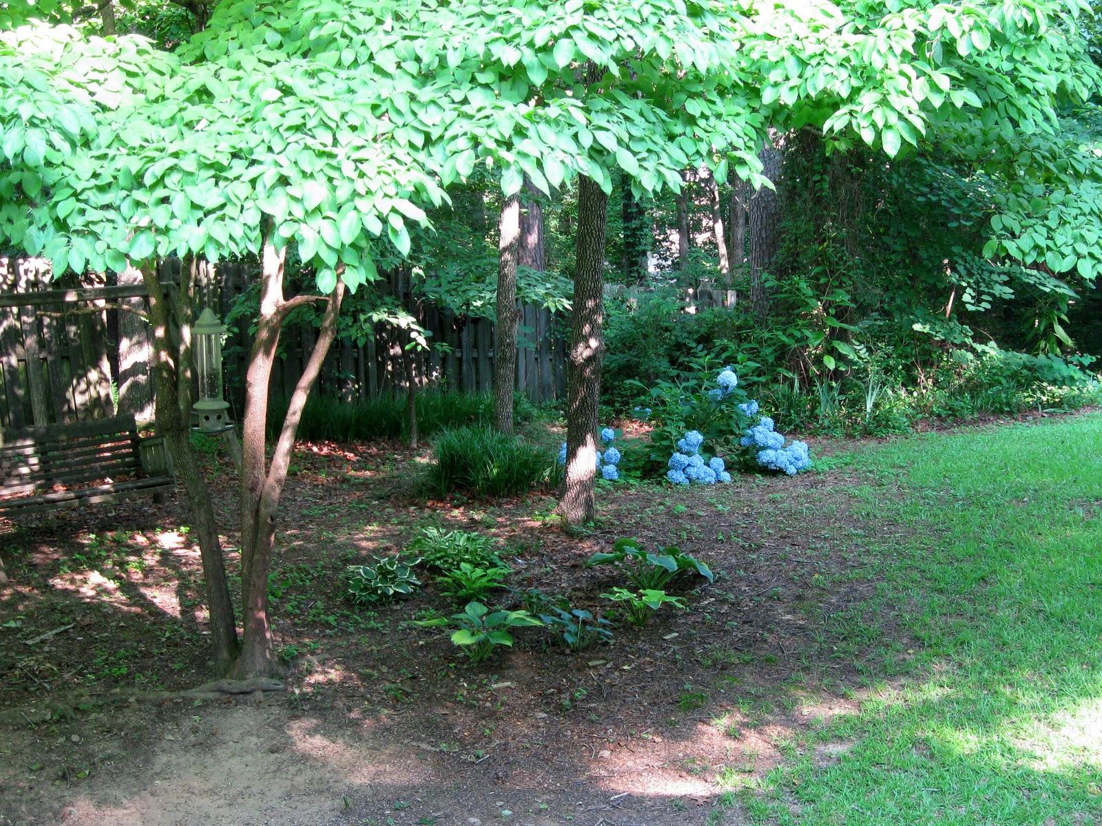 Wooded Backyard Gardening Ideas