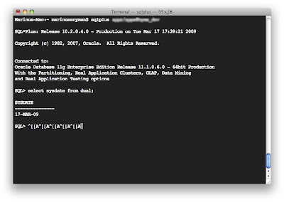 Oracle, Apple & Other Tech   : SQL*Plus command history on