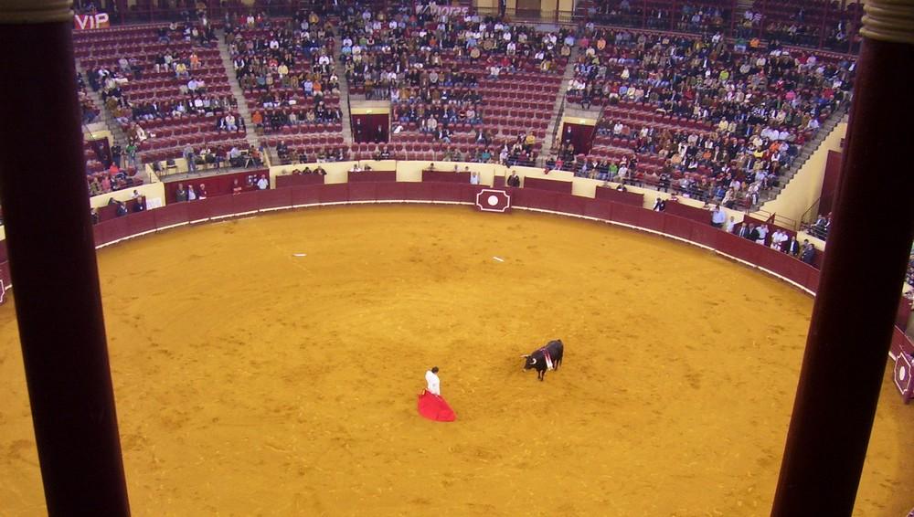 Corrida – Hiszpania w pigułce