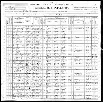Finnestad Ancestry: 1900 US Federal Census - Mary Sanderson