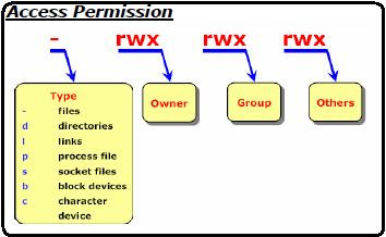 File and directory linux permission
