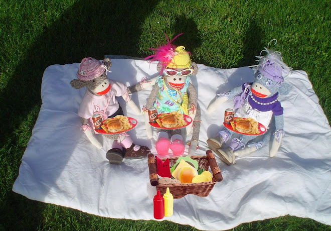 Sock Monkey Picnic
