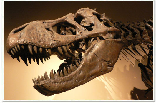 Resultado de imagen de nibiru extinguió a los dinosaurios