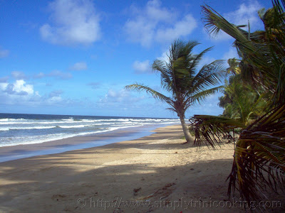 Mayaro Beach Trinidad and Tobago